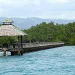 Bird Sanctuary and Mangrove Forest Park is Top Visited Tourist Spot of Bais City
