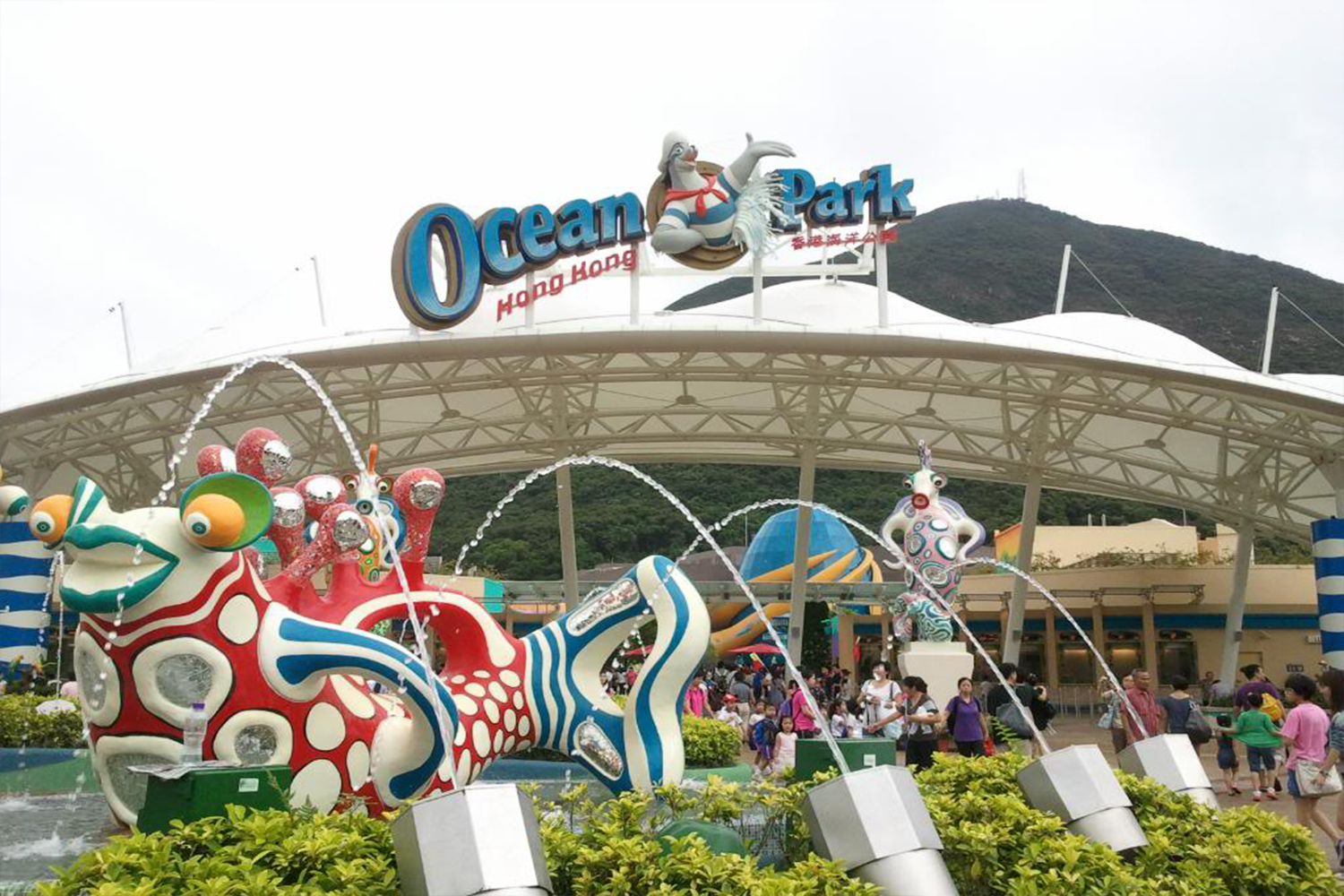 ocean park guys The price of parking includes park admission for everyone riding in the car special group packages are available, strictly by reservation there is a flat rate available for buses.