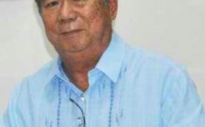 Governor Alfredo Marañon Jr Preferred Senatorial Candidates