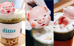 Ditto Modern Tea: Milk Tea With Adorable Piglet-Designed Marshmallow