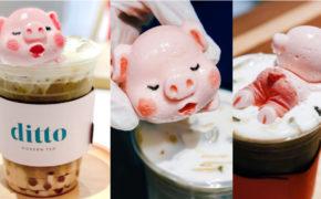 Ditto Modern Tea: Milk Tea With Adorable Piglet-Designed Marshmallow