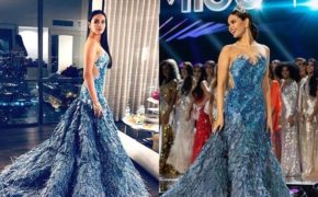 "Miss Universe Catriona Grey ""Reflection"" gown ""Inspiration & Details"""