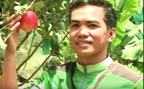 Agriculture Student Benzone Sepe Raised First Apple Tree in the Philippines, How Does this Possible?