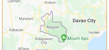 African Swine Fever Detected in 4 Barangays in Magpet Cotabato, says DA